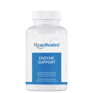 Enzyme Support